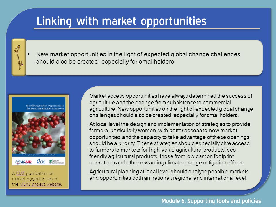 Linking with market opportunities