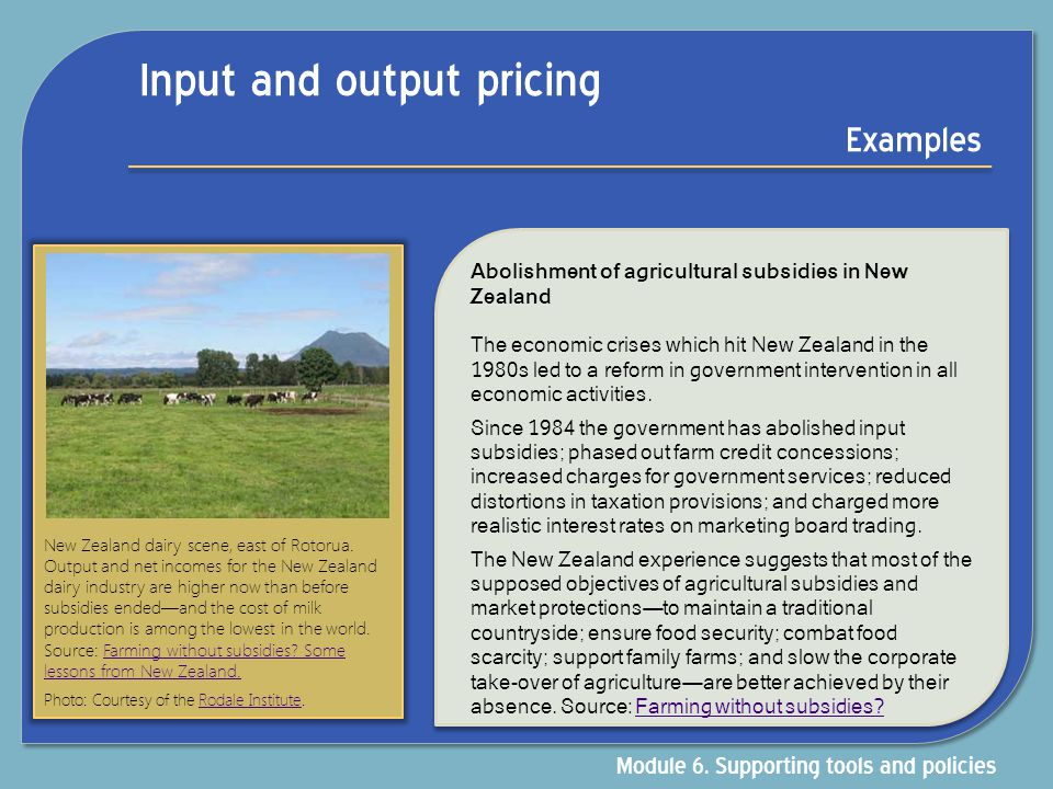 Input and output pricing