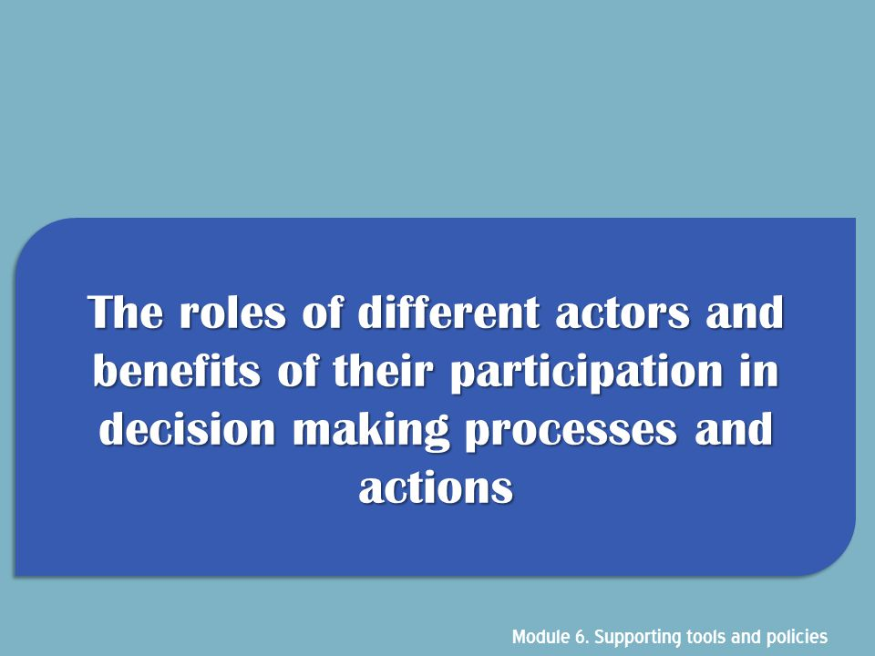 The roles of different actors and benefits of their participation in decision making processes and actions