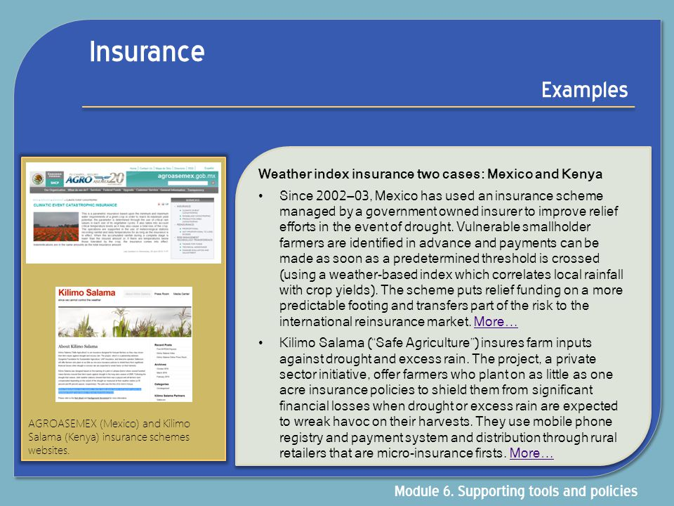 Insurance Examples Module 6. Supporting tools and policies