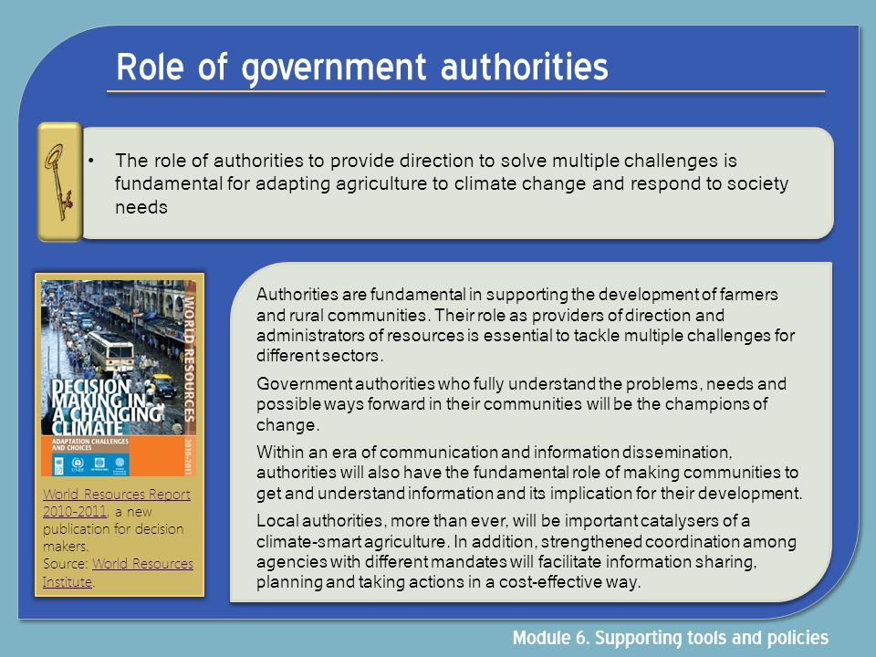 Role of government authorities