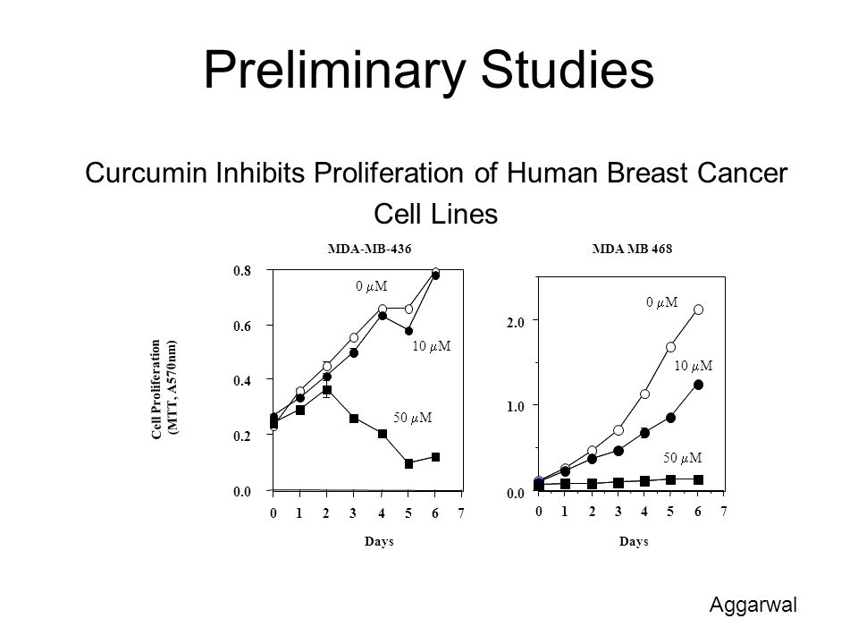 Curcumin Inhibits Proliferation of Human Breast Cancer
