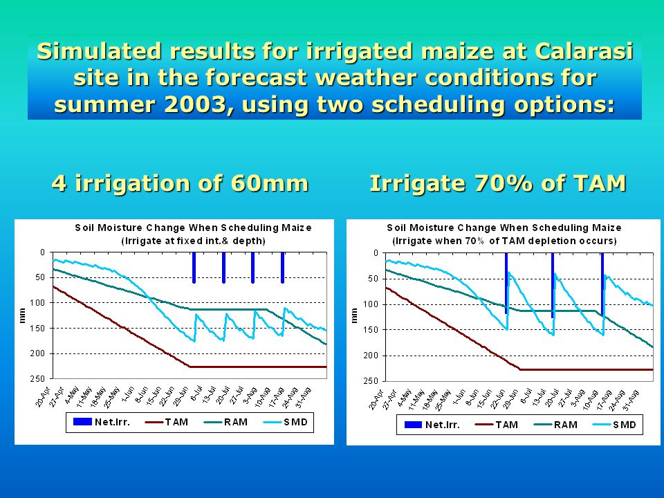 Simulated results for irrigated maize at Calarasi site in the forecast weather conditions for summer 2003, using two scheduling options:
