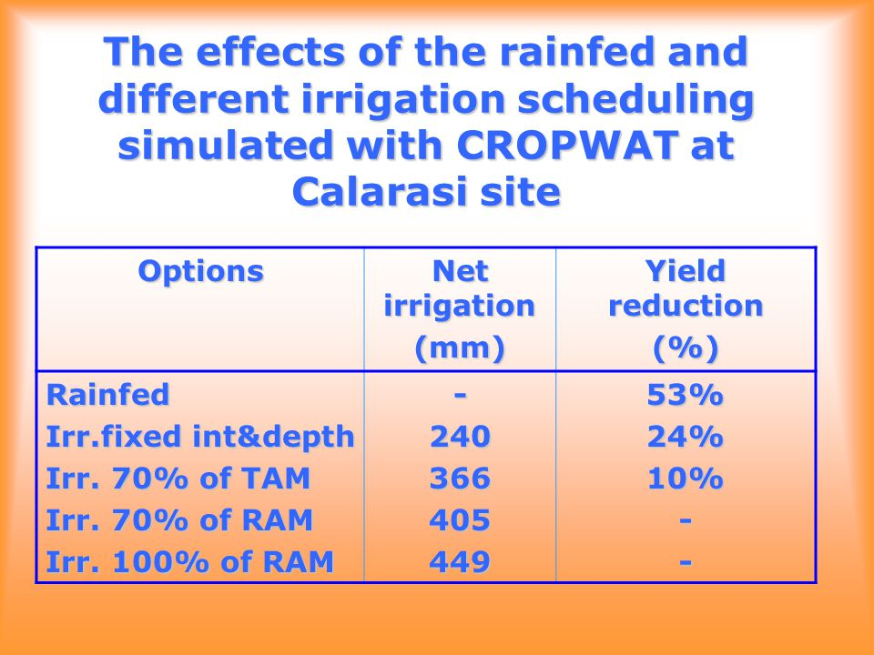 The effects of the rainfed and different irrigation scheduling simulated with CROPWAT at Calarasi site