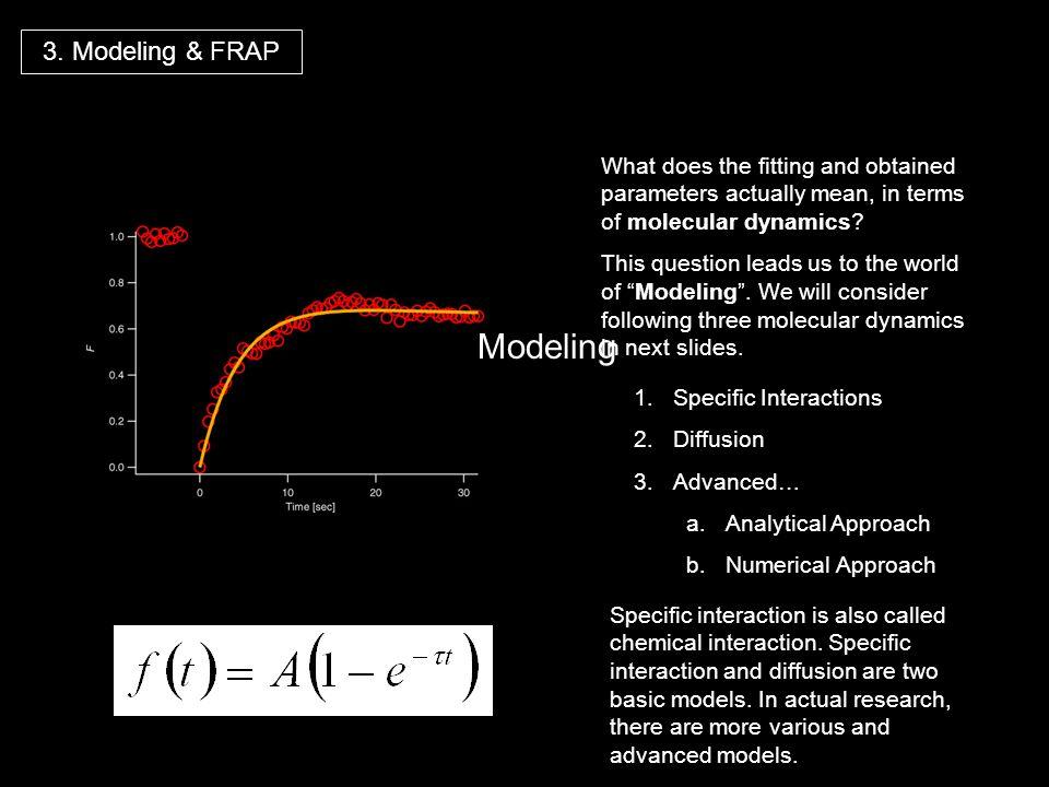Modeling 3. Modeling & FRAP