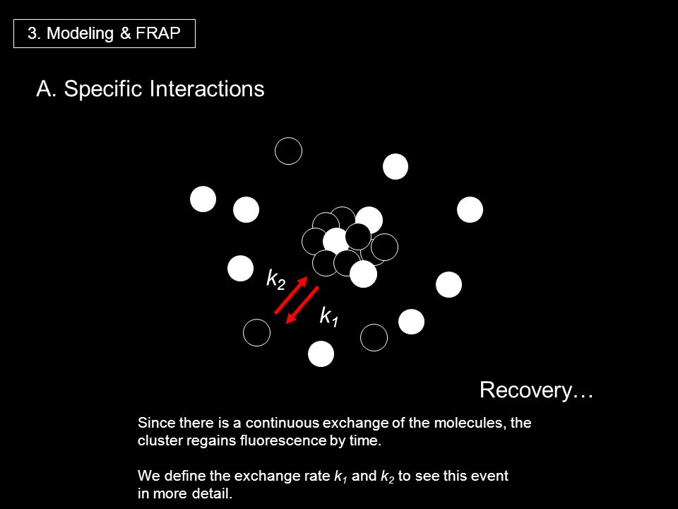 A. Specific Interactions
