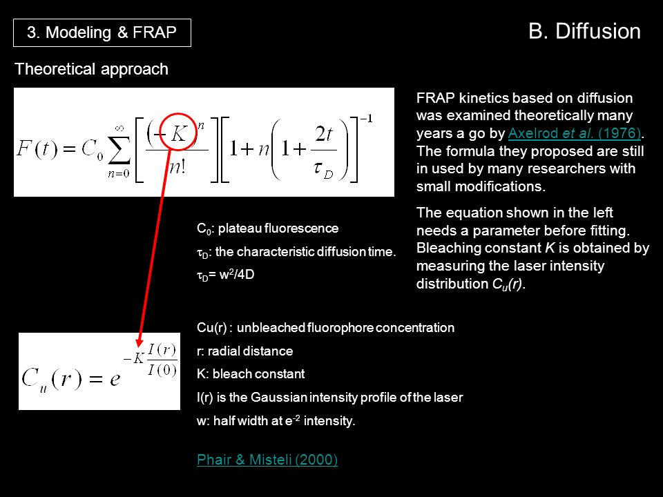 B. Diffusion 3. Modeling & FRAP Theoretical approach