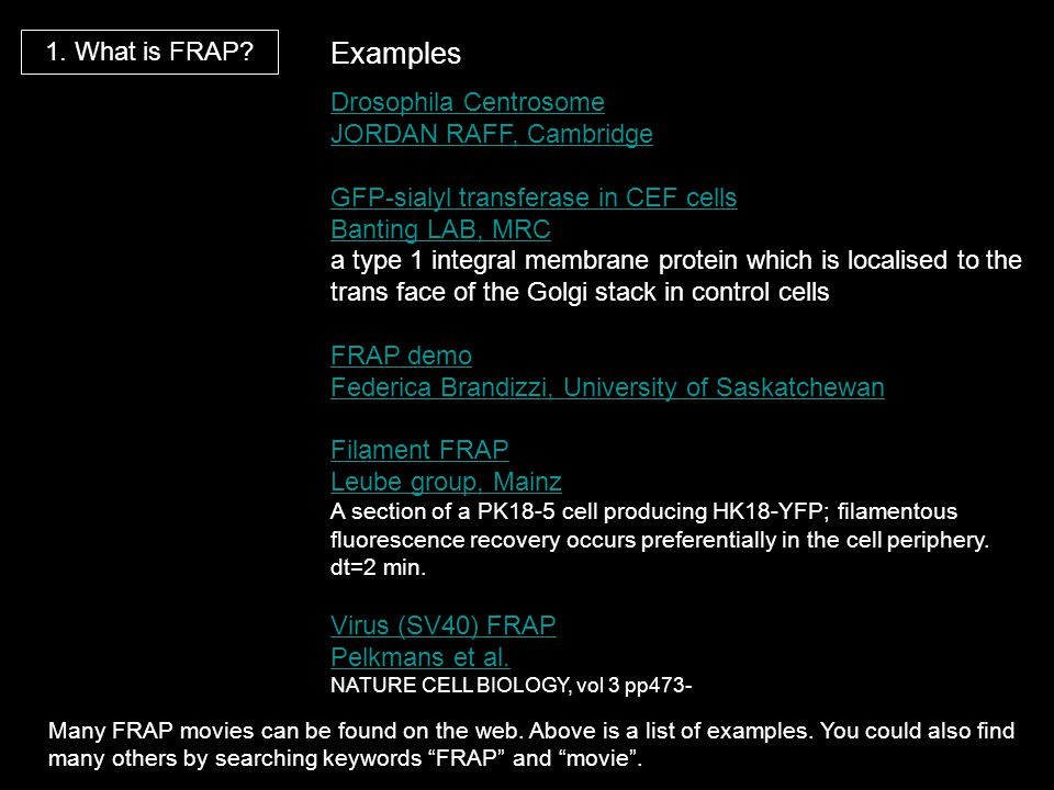 Examples 1. What is FRAP Drosophila Centrosome JORDAN RAFF, Cambridge