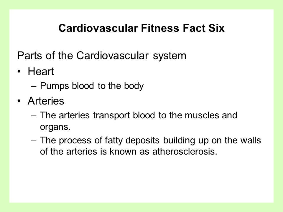 Cardiovascular Fitness Fact Six