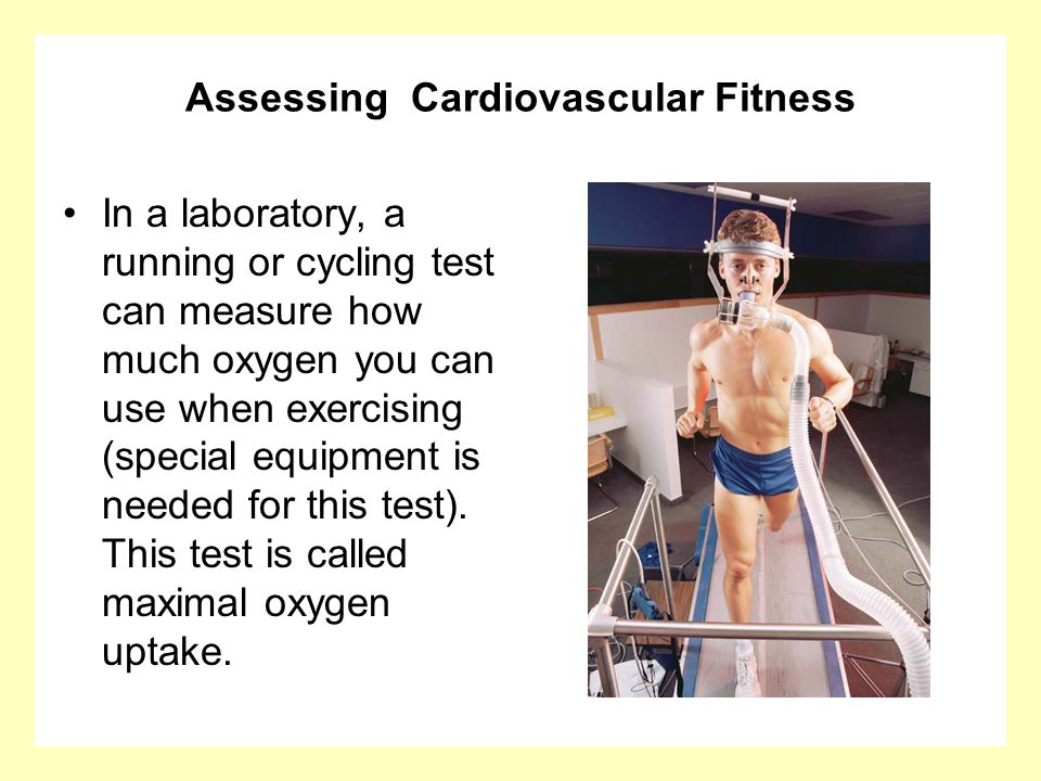 Assessing Cardiovascular Fitness