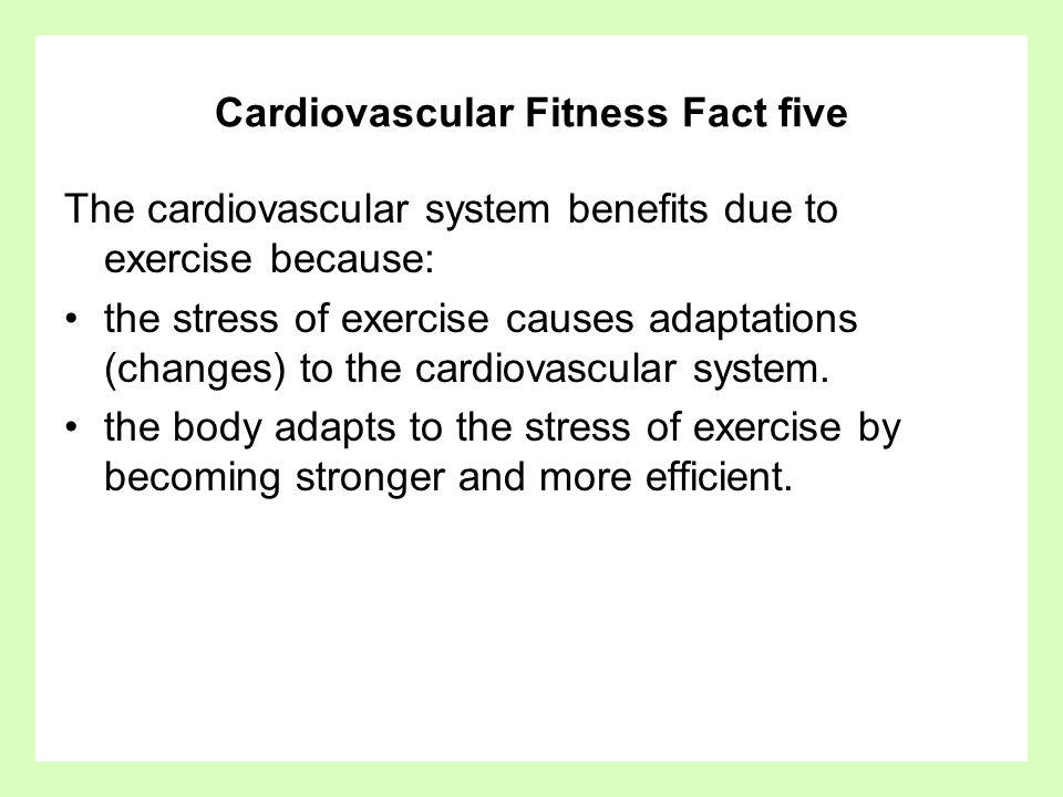 Cardiovascular Fitness Fact five