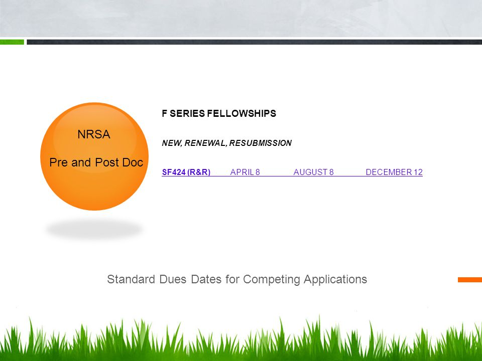 Standard Dues Dates for Competing Applications