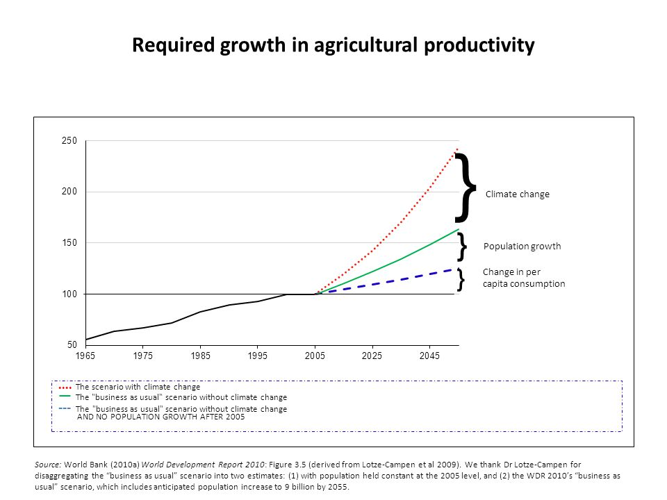 Required growth in agricultural productivity
