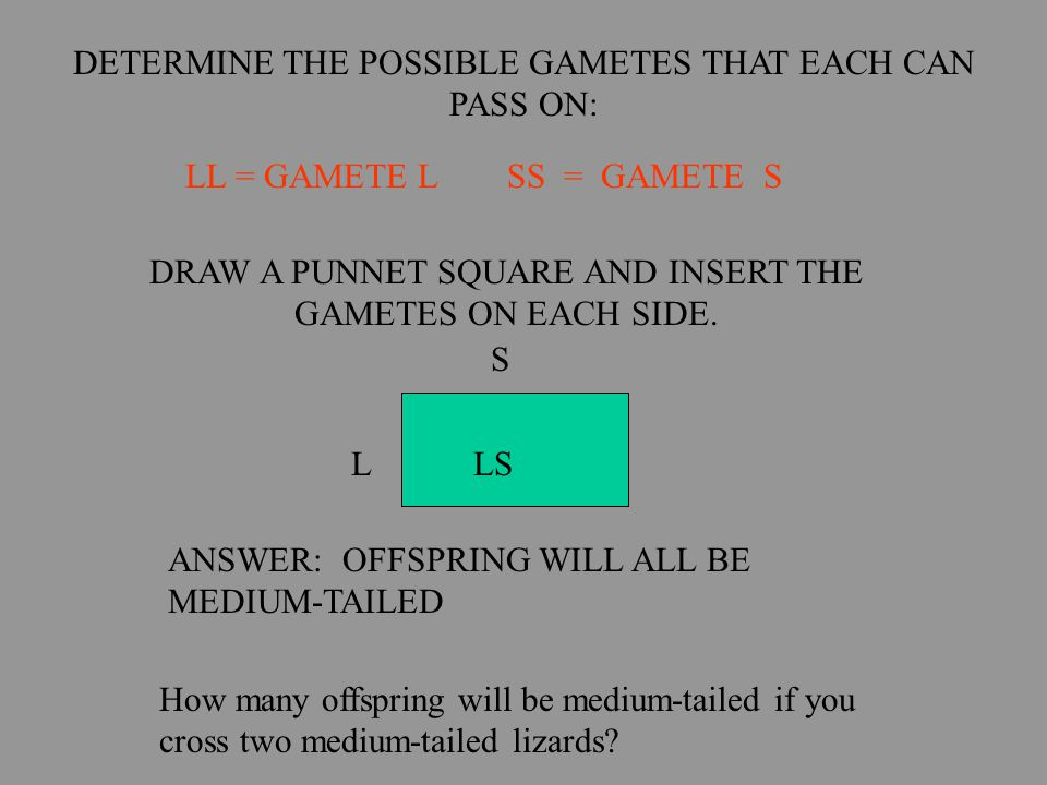 DETERMINE THE POSSIBLE GAMETES THAT EACH CAN PASS ON: