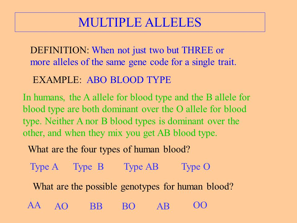 MULTIPLE ALLELES DEFINITION: When not just two but THREE or more alleles of the same gene code for a single trait.