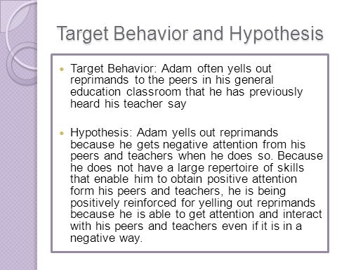 Target Behavior and Hypothesis