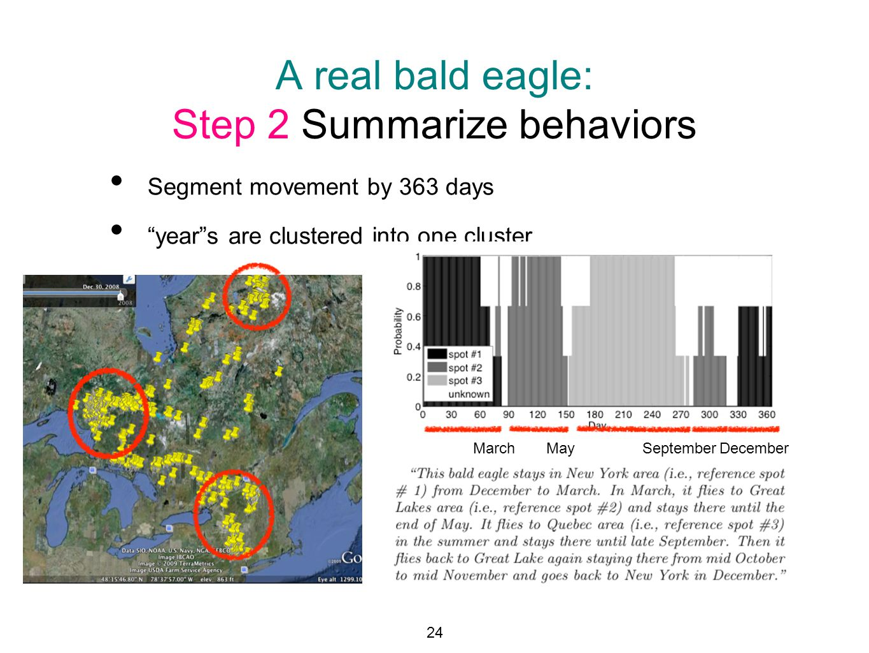 A real bald eagle: Step 2 Summarize behaviors