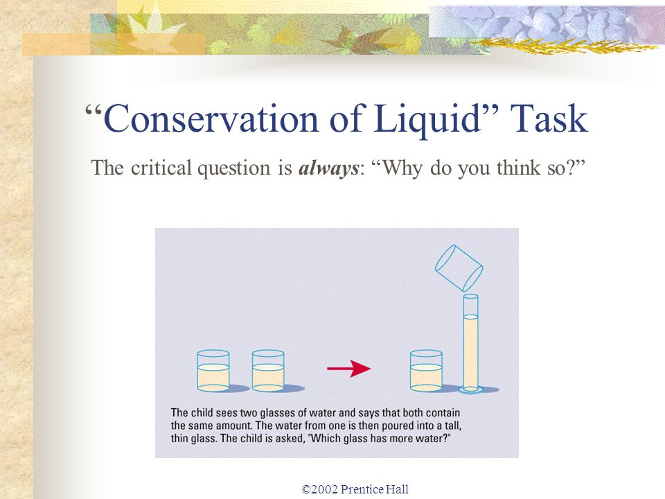 Conservation of Liquid Task