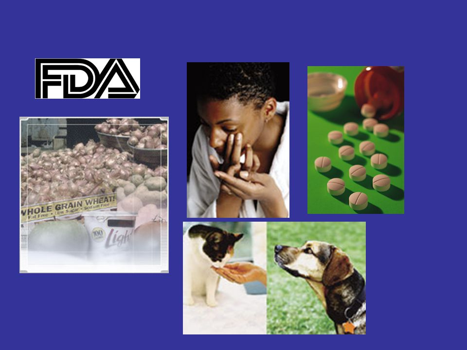 www.fda.gov The Food and Drug Administration (FDA) is the part of our government that makes sure that: