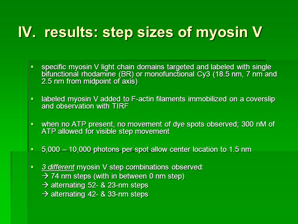 IV. results: step sizes of myosin V