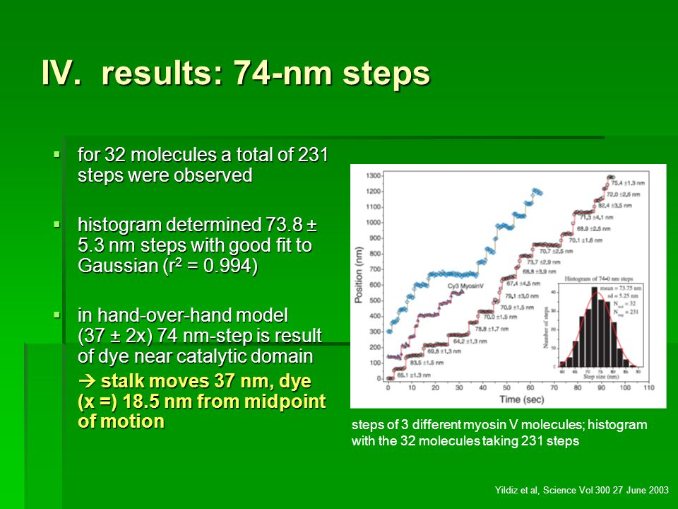 IV. results: 74-nm steps for 32 molecules a total of 231 steps were observed.