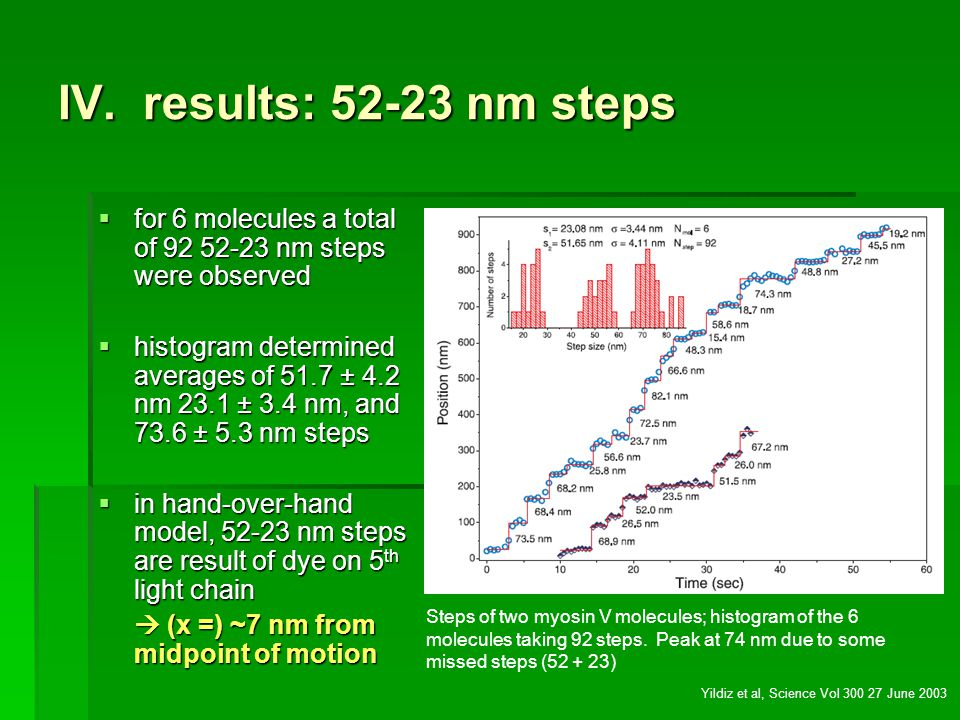 IV. results: 52-23 nm steps for 6 molecules a total of 92 52-23 nm steps were observed.