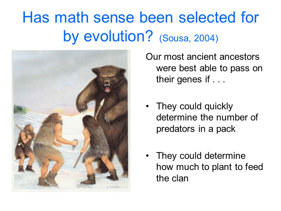 Has math sense been selected for by evolution (Sousa, 2004)