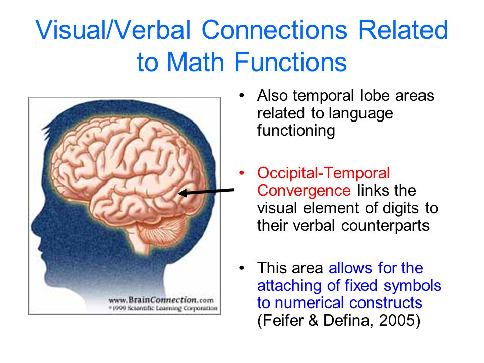 Visual/Verbal Connections Related to Math Functions