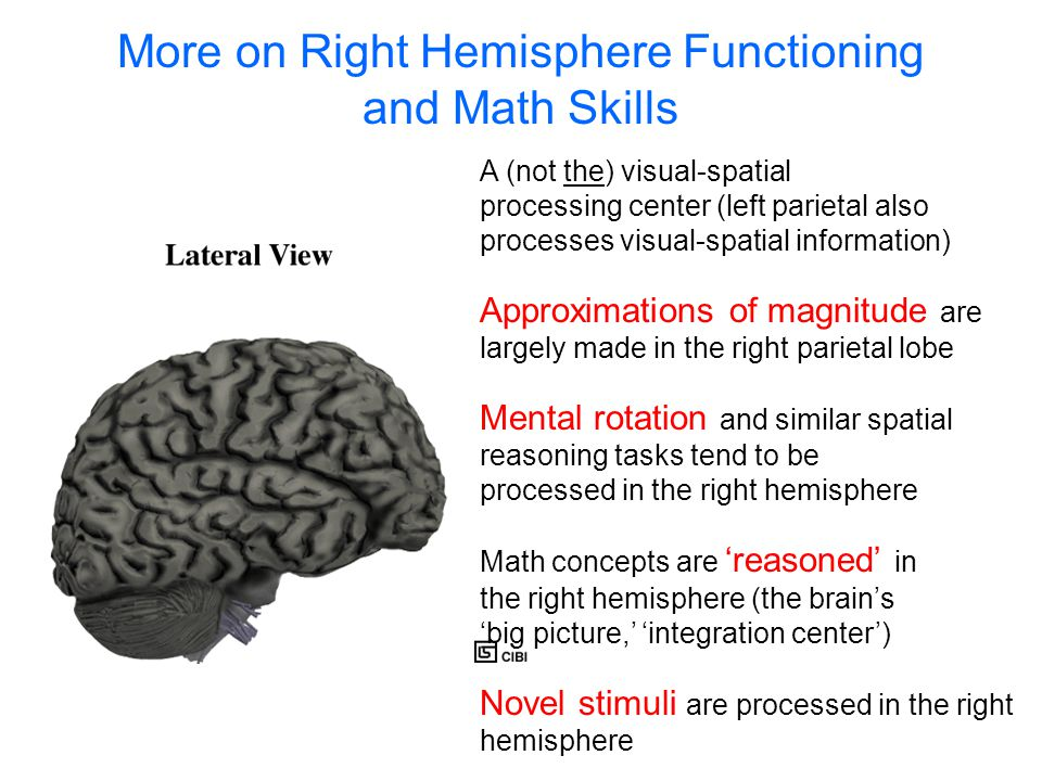 More on Right Hemisphere Functioning