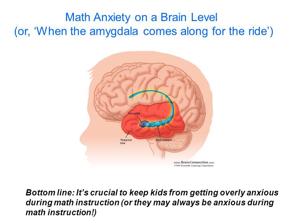 Math Anxiety on a Brain Level