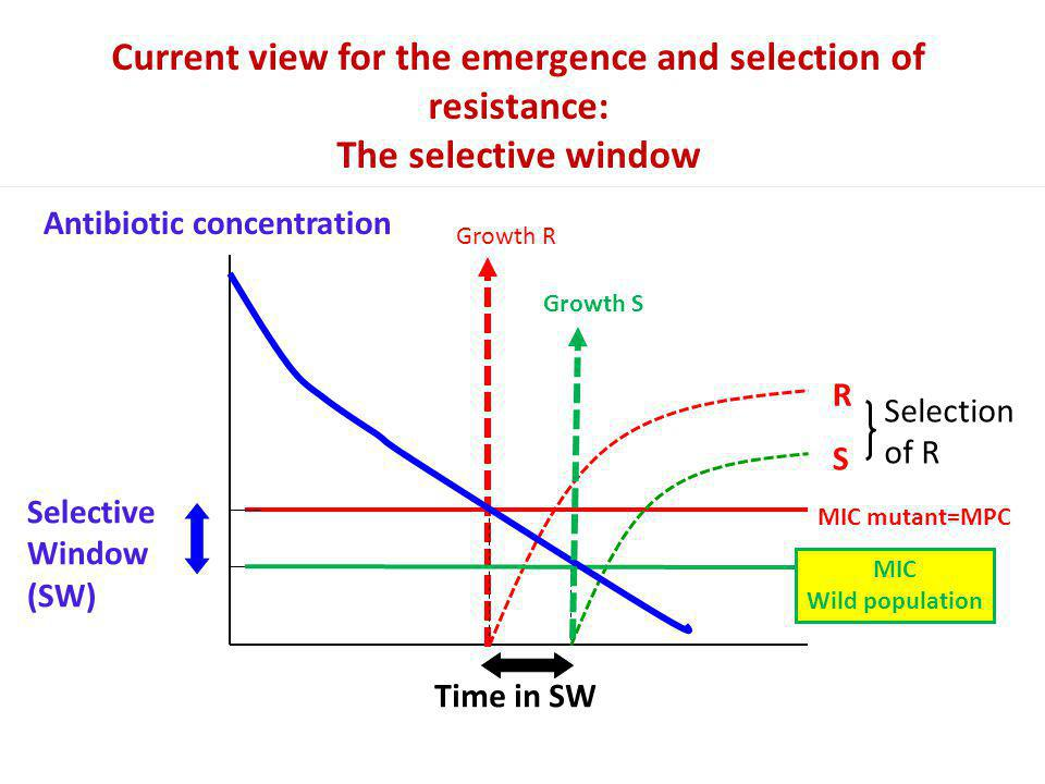 Current view for the emergence and selection of resistance:
