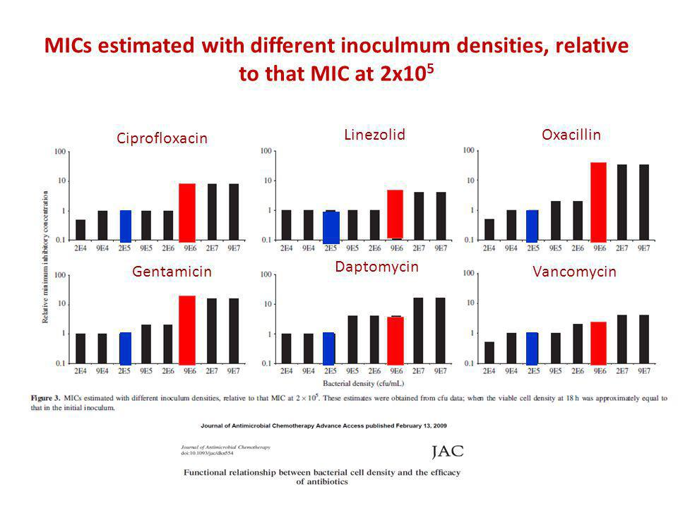 MICs estimated with different inoculmum densities, relative to that MIC at 2x105