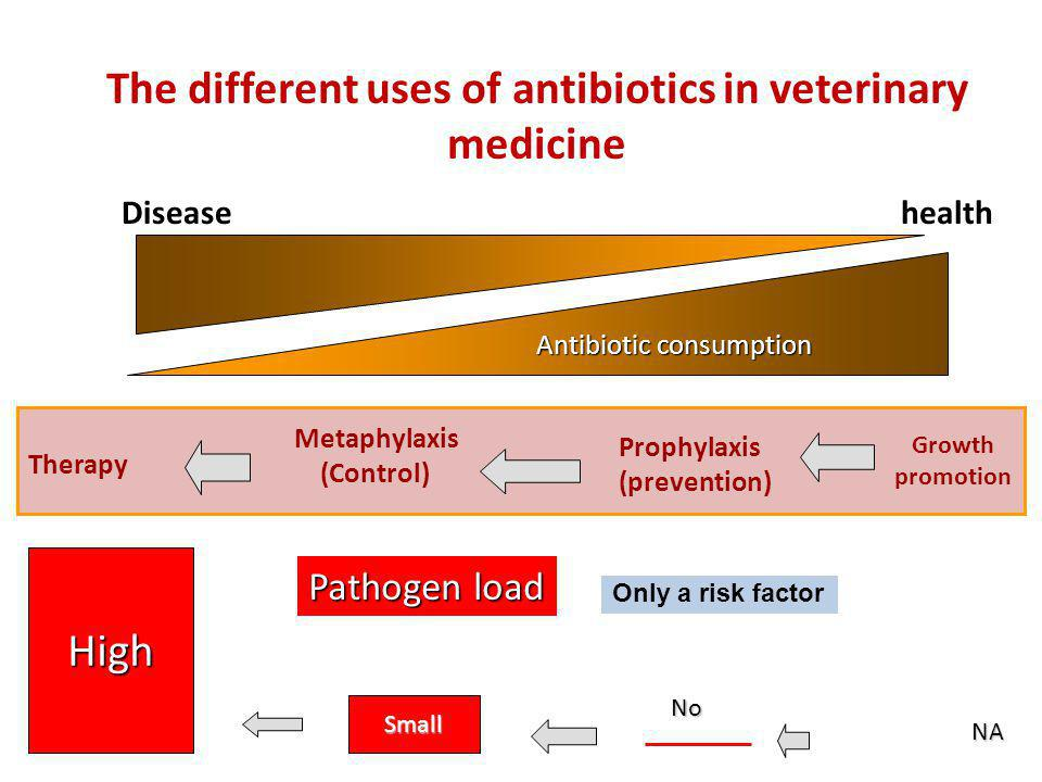 The different uses of antibiotics in veterinary medicine