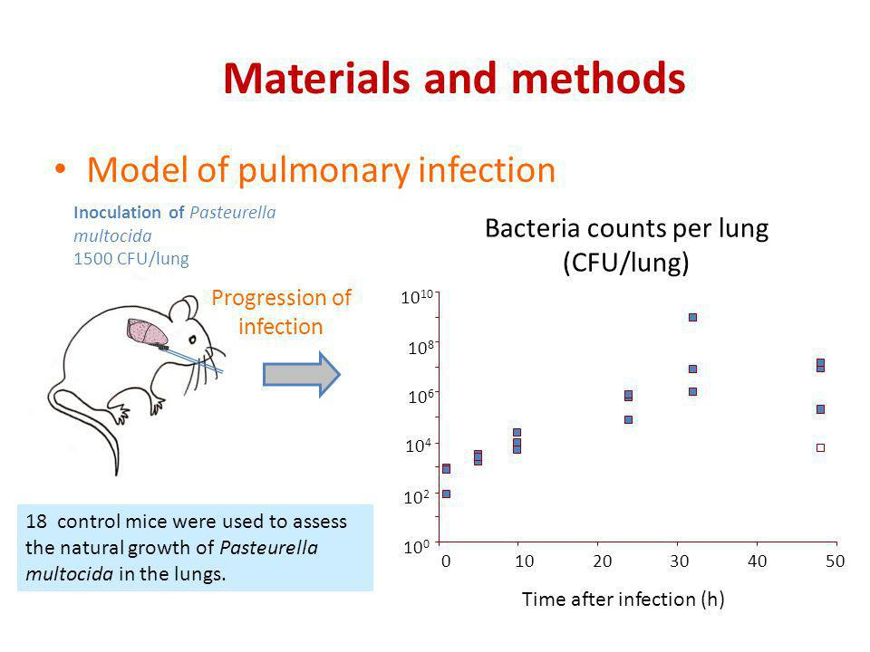 Materials and methods Model of pulmonary infection
