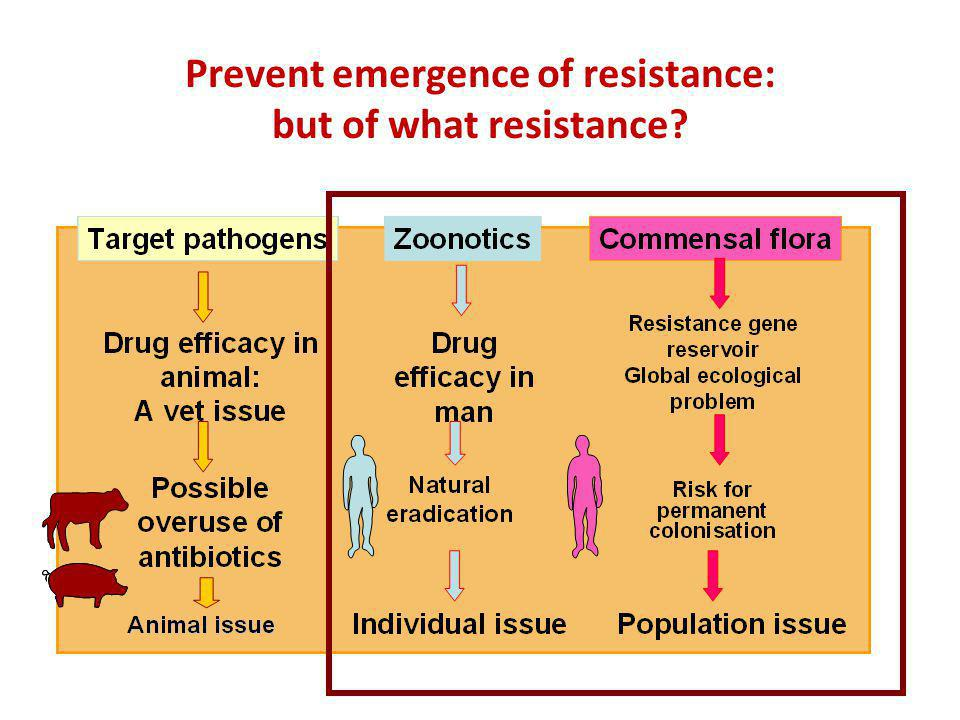 Prevent emergence of resistance: but of what resistance