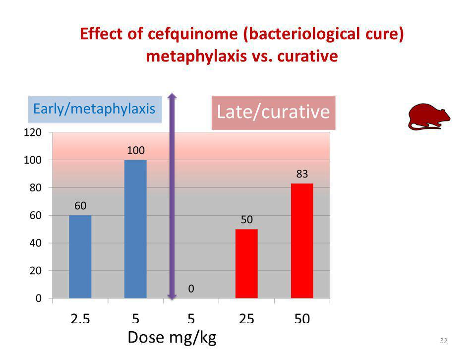Effect of cefquinome (bacteriological cure) metaphylaxis vs. curative