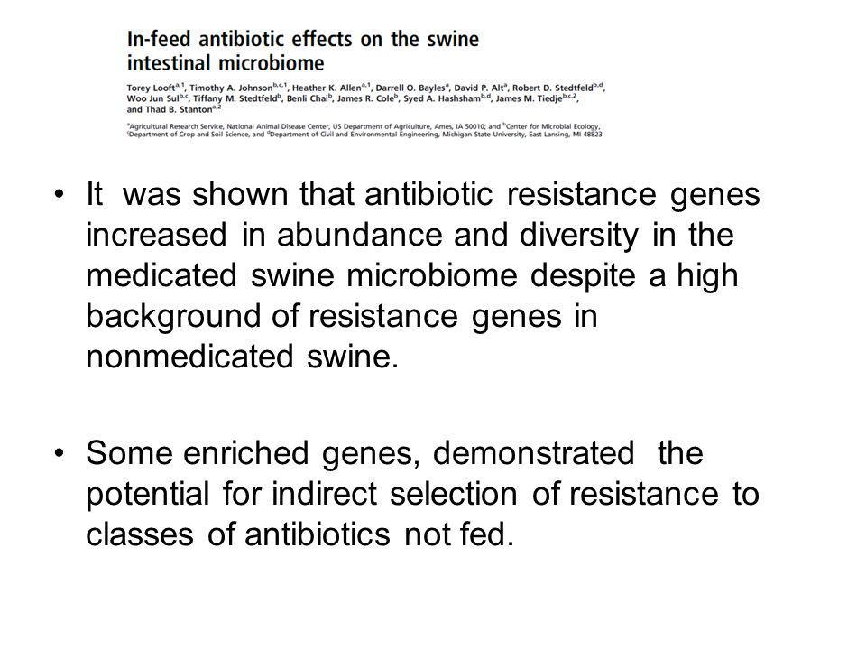 It was shown that antibiotic resistance genes increased in abundance and diversity in the medicated swine microbiome despite a high background of resistance genes in nonmedicated swine.