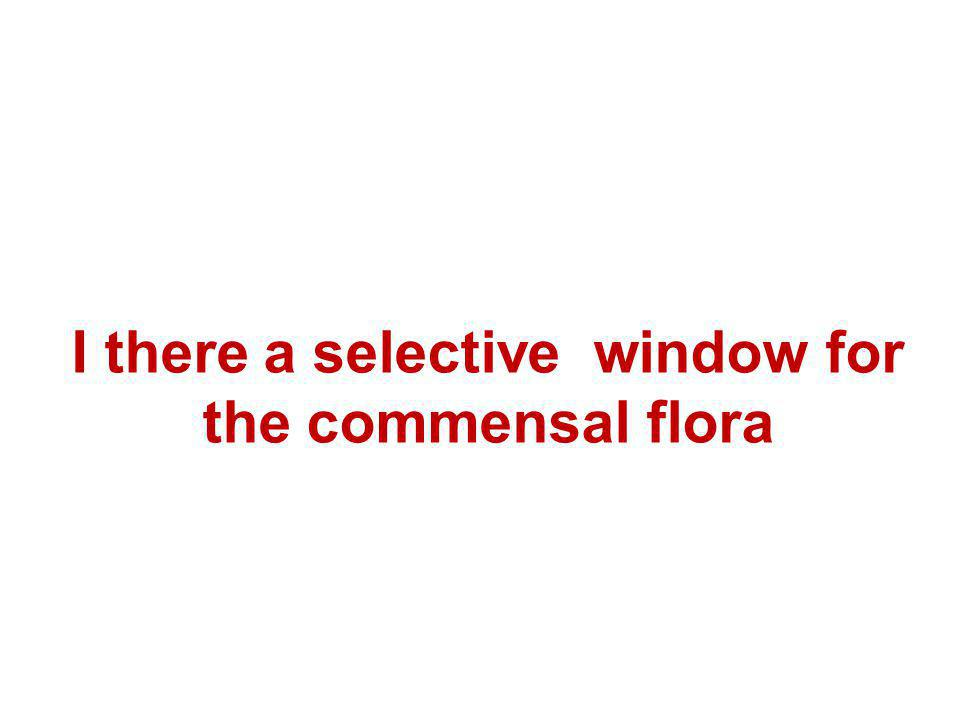 I there a selective window for the commensal flora