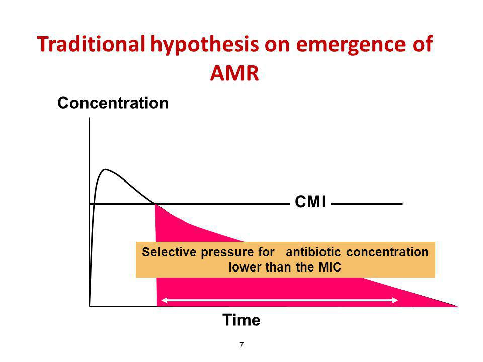Traditional hypothesis on emergence of AMR