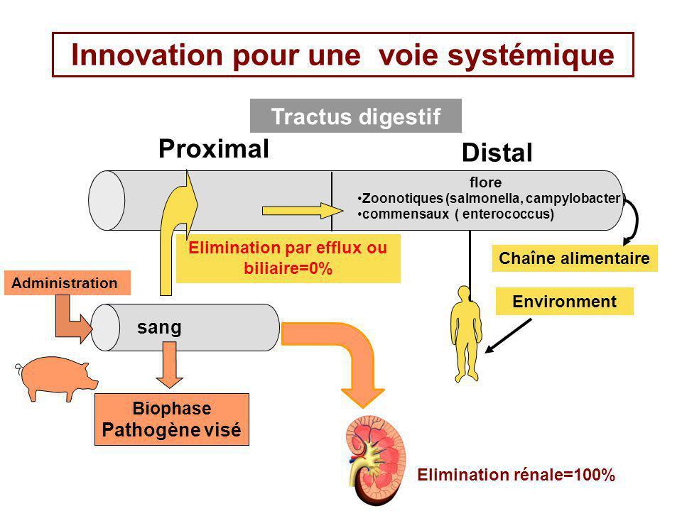 Innovation pour une voie systémique