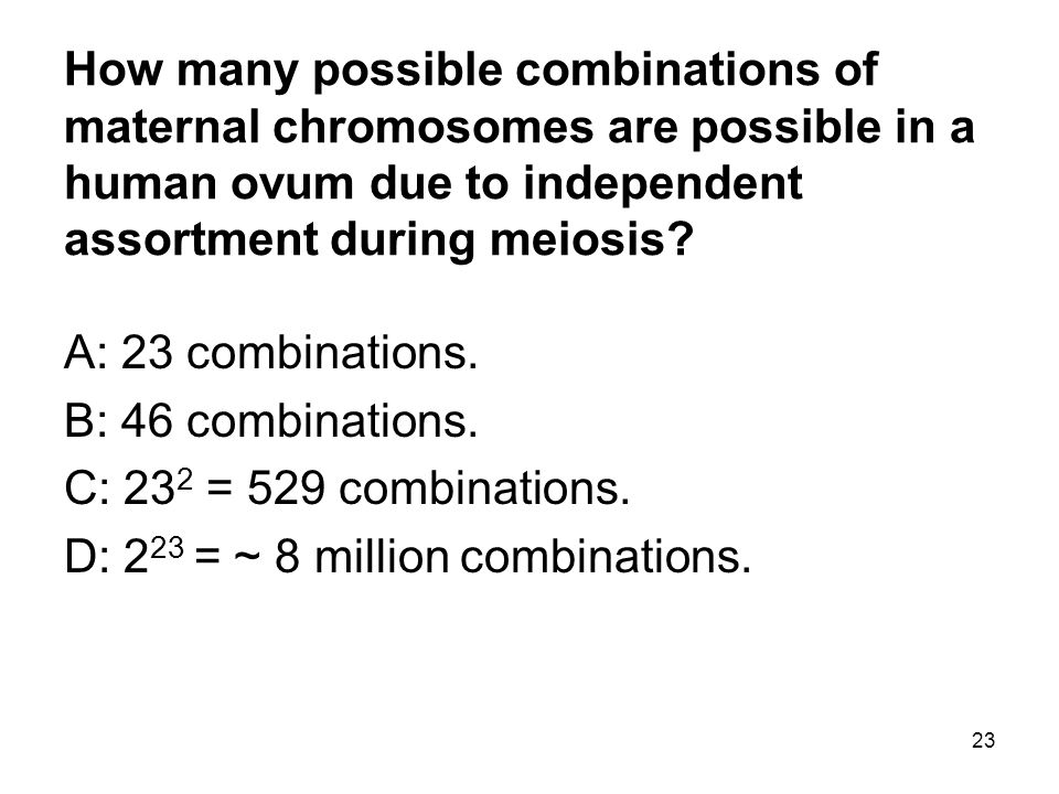 How many possible combinations of maternal chromosomes are possible in a human ovum due to independent assortment during meiosis