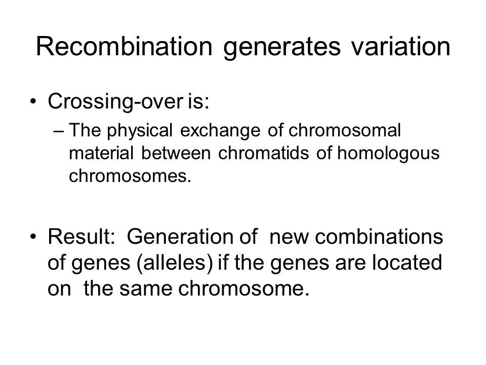 Recombination generates variation
