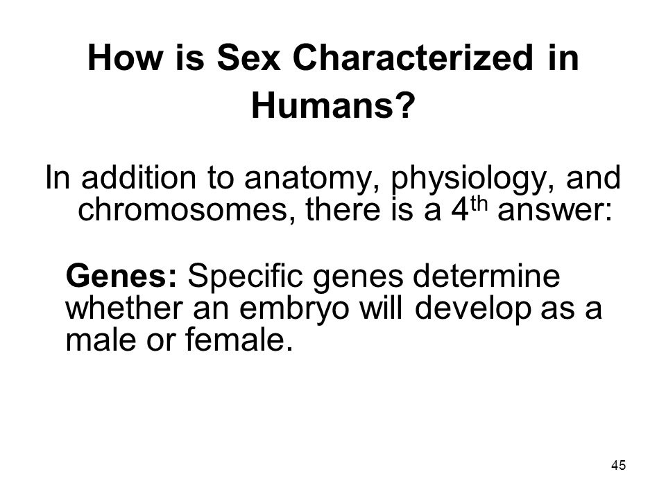 How is Sex Characterized in Humans
