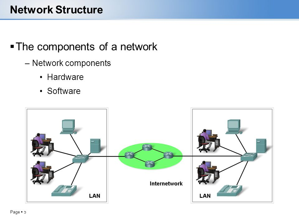 The components of a network