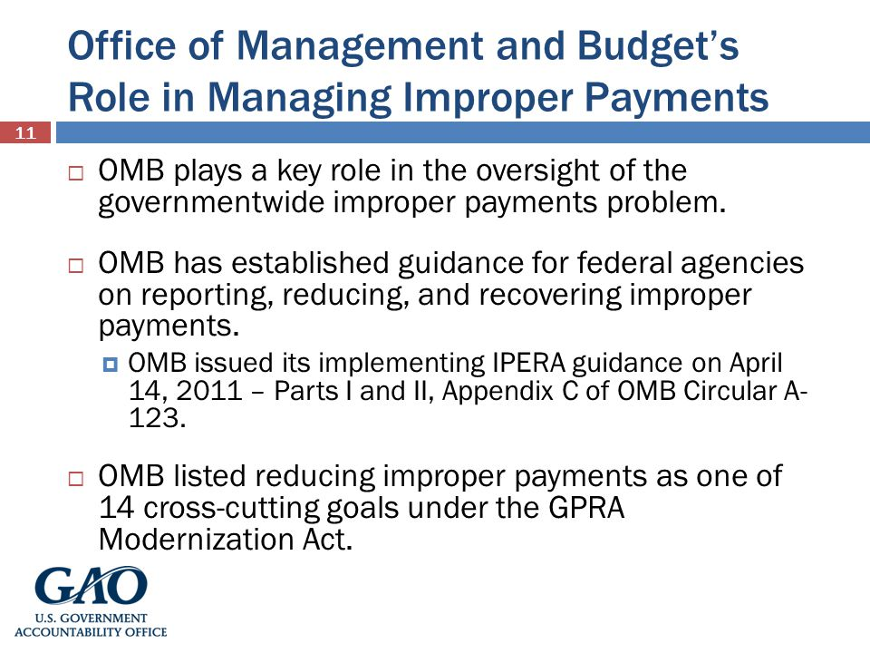 Office of Management and Budget's Role in Managing Improper Payments