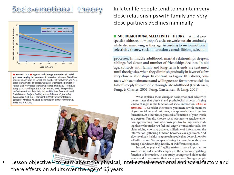 Socio-emotional theory