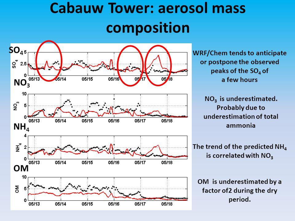 Cabauw Tower: aerosol mass composition