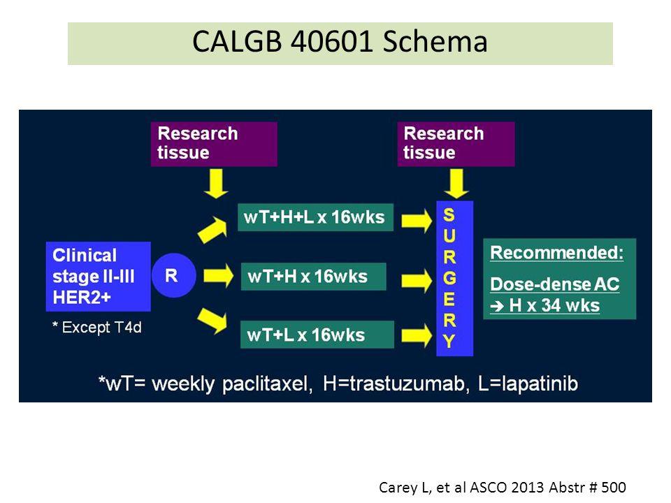 CALGB 40601 Schema Carey L, et al ASCO 2013 Abstr # 500
