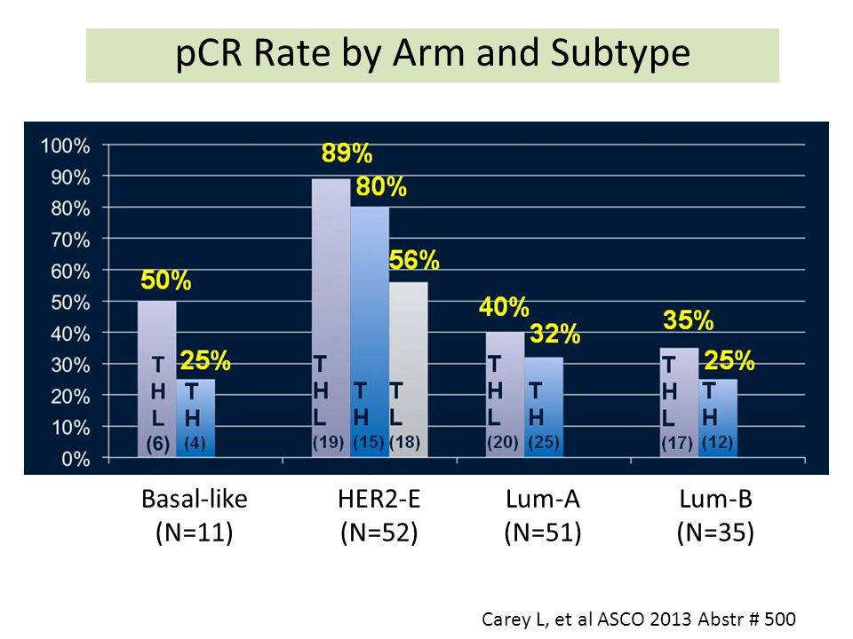 pCR Rate by Arm and Subtype