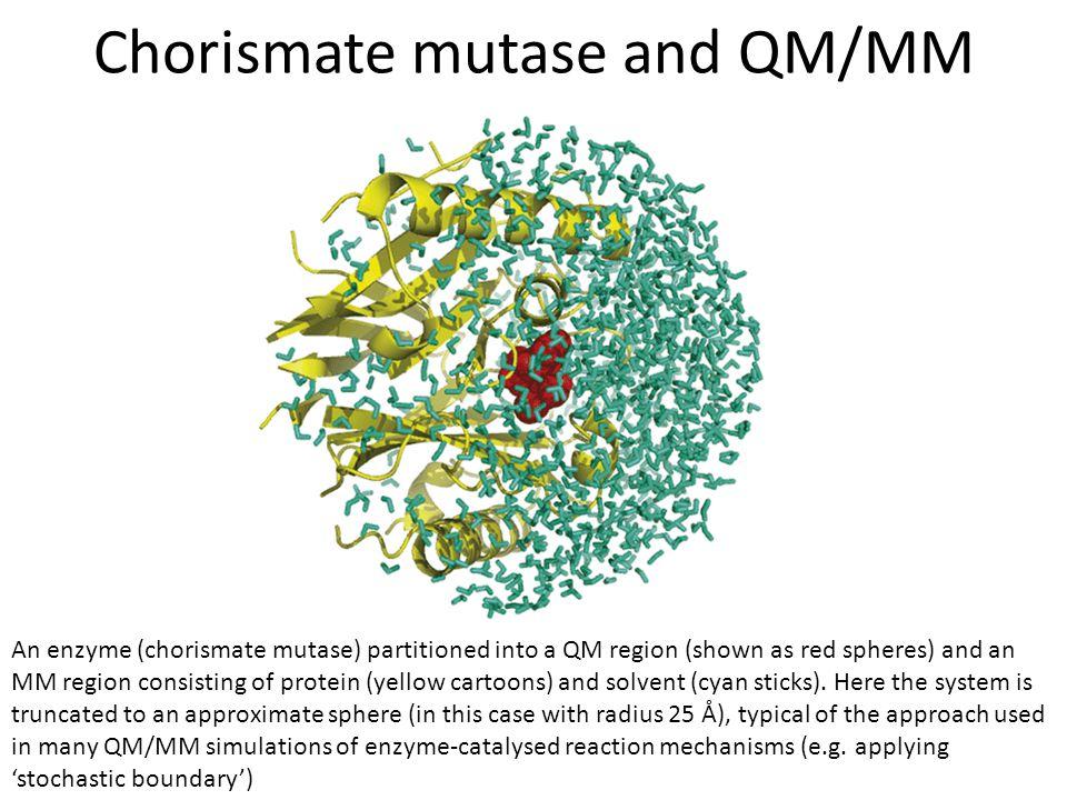 Chorismate mutase and QM/MM